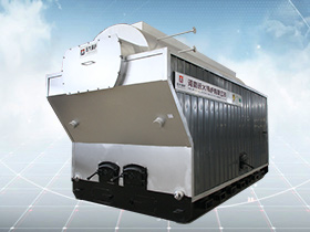 DZH Coal/Wood Steam Boiler
