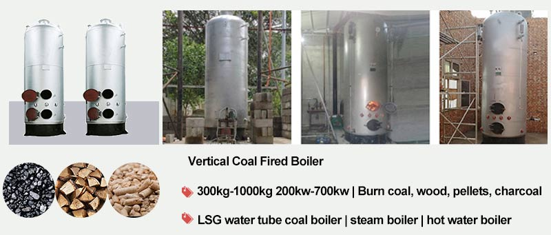 LSG vertical coal boiler