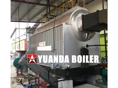 DZL automatic steam boiler