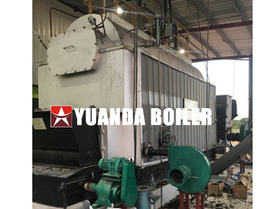 automatic biomass steam boiler