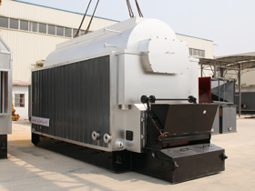 DZL Coal Steam Boiler