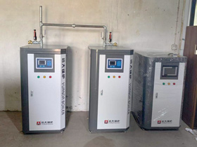 Electric steam generator,gas steam generator, pellets steam generator