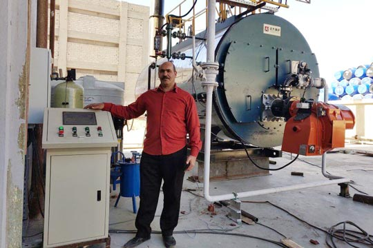 4 ton Gas Fired Steam Boiler