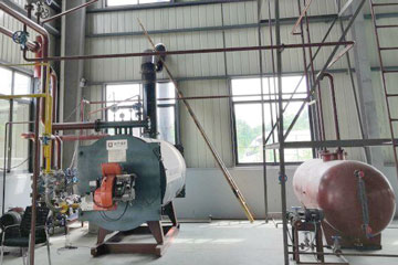 Gas Fired Thermal Oil Boilers