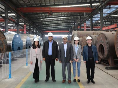 biomass steam boiler, biomass burner boiler, biomass fired boiler