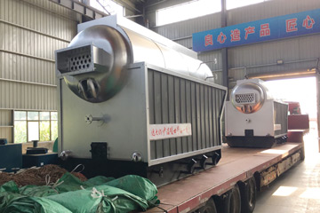 1Ton DZH Model Biomass Fired Boilers