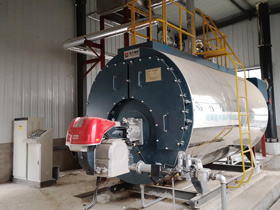 Gas/Lpg/Oil Hot Water Boiler
