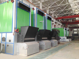 Coal/Biomass Fired Thermal Oil Boiler